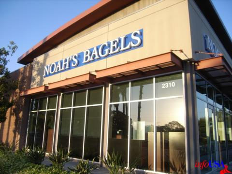 noahs bagels online application for jobs